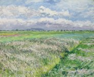 caillebotte_gustave-the_field_plain_of_gennevilliers_study_in_yellow_and_gre (...)